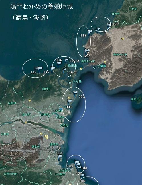 鳴門(徳島・淡路)地域での養殖地域とサンプル採取地点